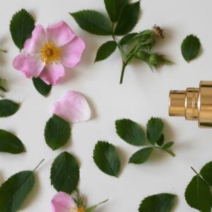 flacon cosmétique naturelle